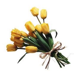 Букет «Tulips»