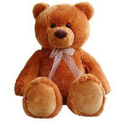 «Big bear»