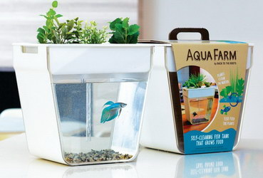 «Aqua Farm»