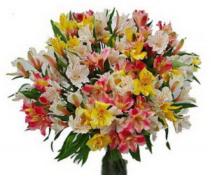 Букет «Flowerina»