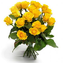 «Gorgeous yellow roses»