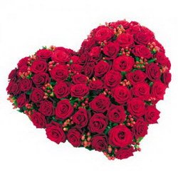 «Heart»
